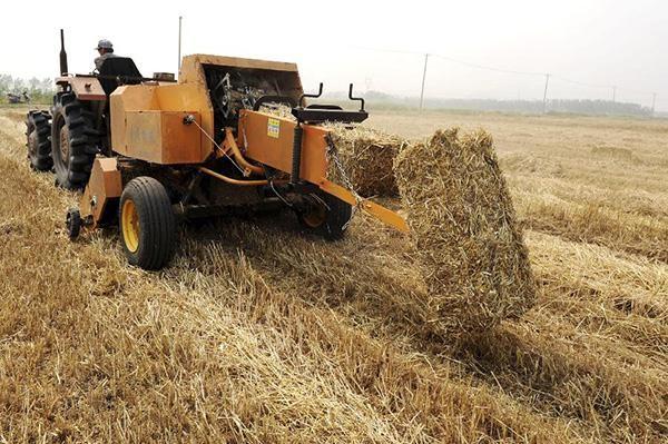 主要农作物秸秆收集系数
