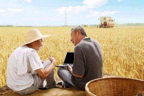 不让农民在数字化大潮中掉队
