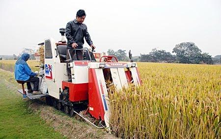 湖北省关于落实2019年农机购置补贴政策的通知