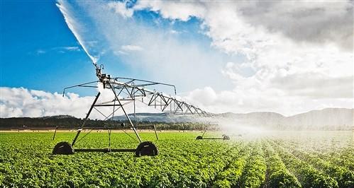 国家现代农业产业科技创新中心建设有序推进