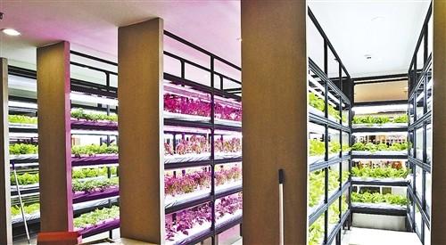 完善农业科技创新平台