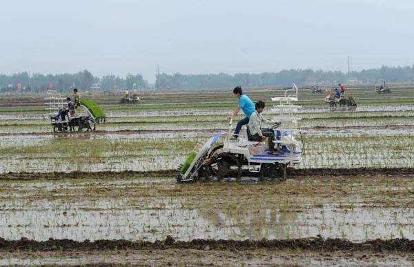 安徽省关于进一步加强农机购置补贴政策监管强化纪律约束的通知