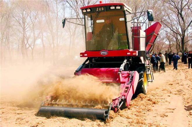 东方红油莎豆收获机研发成功