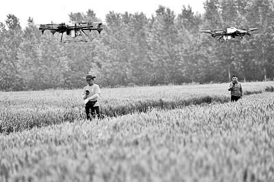 科技,为粮食产业转型升级插上翅膀