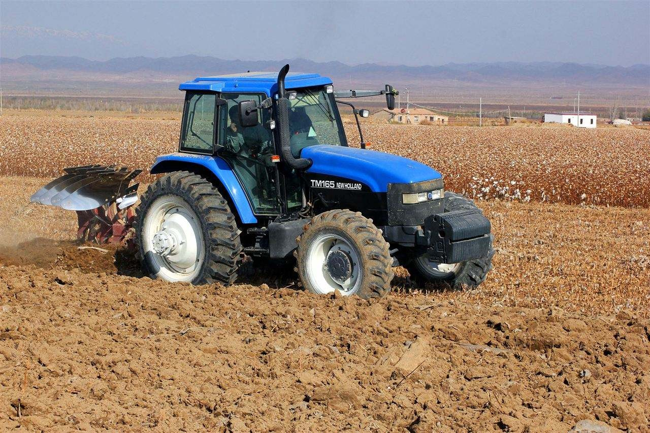 新疆兵团农业生产形势稳中向好 今年春播总面积超1153万亩