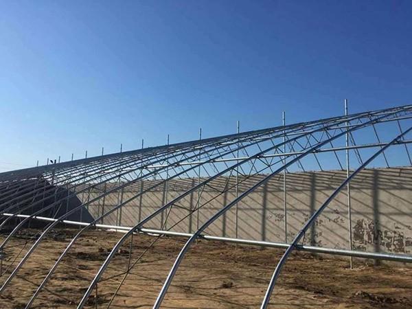每年3000万元,辽宁省对节能日光温室钢结构骨架进行补贴试点