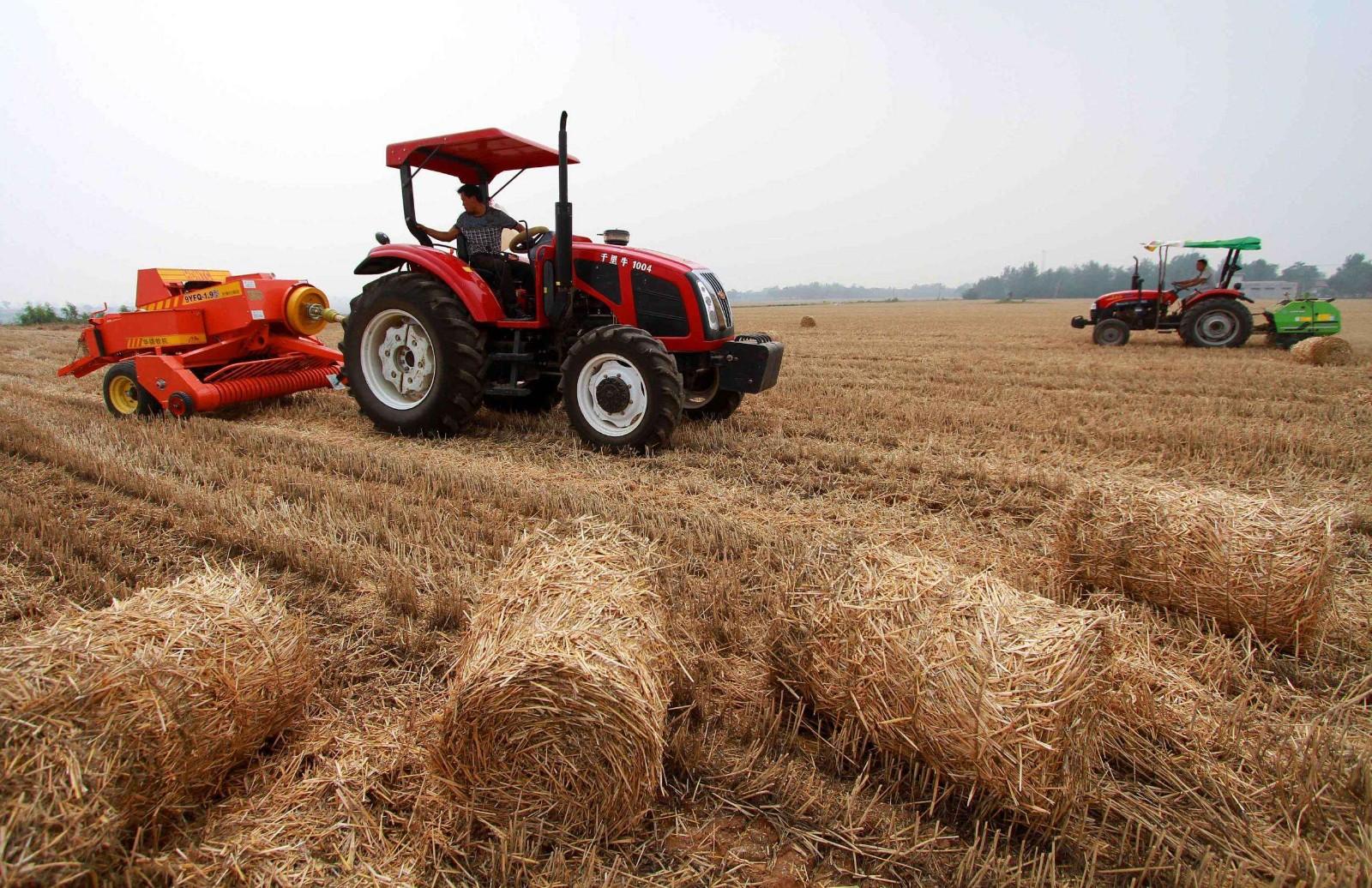 补贴50元/亩,上海市粮油作物秸秆综合利用率目标96%以上