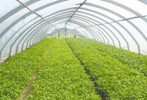 安徽省关于农机新产品购置补贴试点温室大棚分档及补贴额一览表的公示