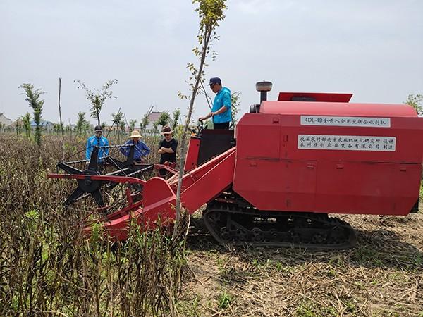 蚕豆专用联合收割机研发成功