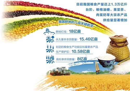 中国饭碗供给有充分保障