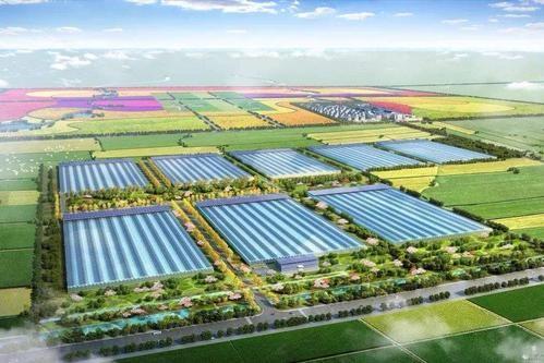 农业农村部 财政部关于公布2019年国家现代农业产业园创建名单的通知