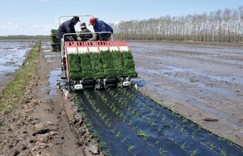 农业农村部农机试验鉴定总站关于印发《2019年水稻插秧机质量调查实施方案》的通知