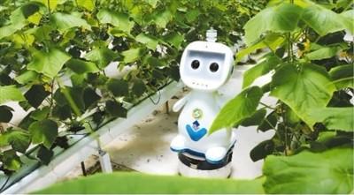 以充足准备迎接农机智能化新趋势