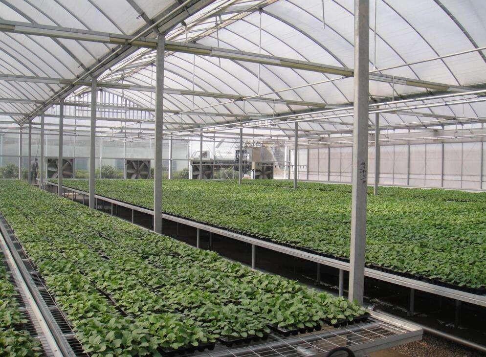 连栋薄膜温室建造技术及验收规范、玻璃温室建造技术及验收规范