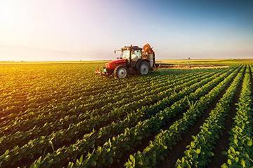 促进乡村产业振兴 带动农民多渠道增收