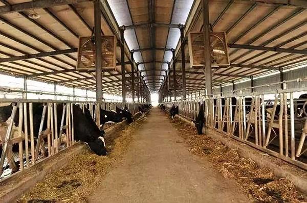 畜禽养殖相关农业装备,或将在江苏迎来新一轮热卖