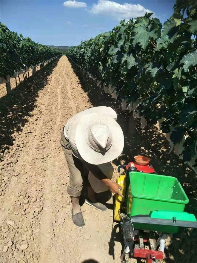 农机助力巧解葡萄种植户追肥难题
