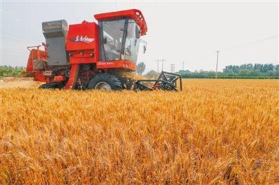 """濮阳市农机局 创新""""加减乘除""""工作法推进农机购置补贴政策落实"""