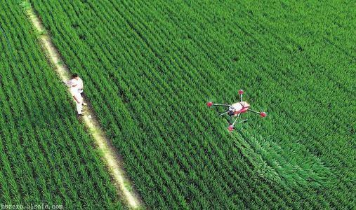 """""""糧二代""""發展智慧農業 走機械化之路"""