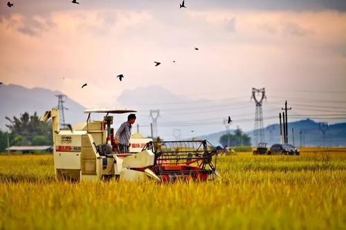 为加快推进农业农村现代化保驾护航