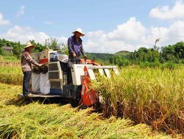 云南省关于2019年第四批农业机械购置补贴产品自主投档信息的公示
