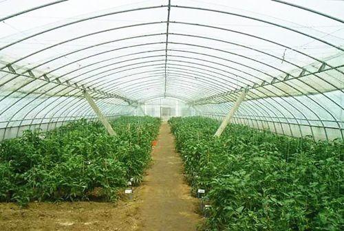辽宁省2019-2020年节能日光温室钢结构骨架购置补贴额公示