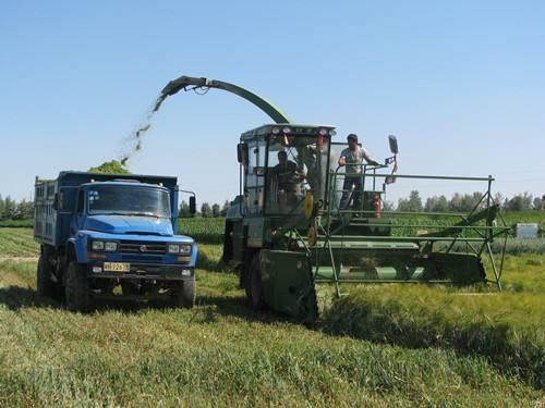 饲草料收割加工机械和养殖装备,在江苏省或将迎来新一轮发展