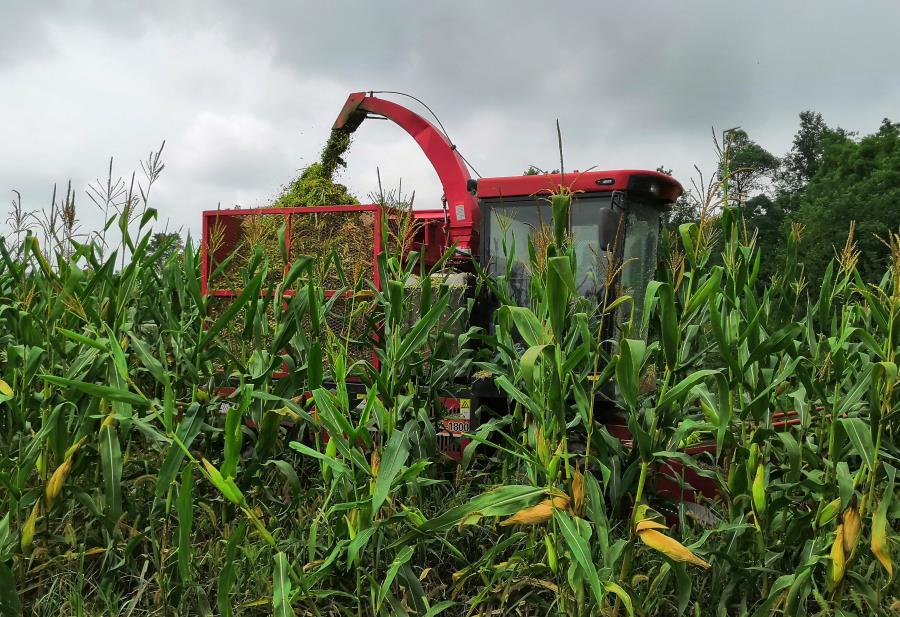 长寿区:农业机械化又添新帮手