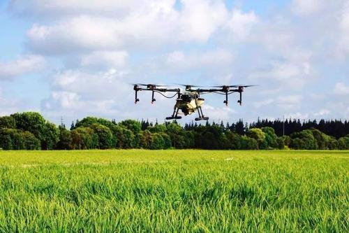 浙江:规模化种粮增效益 机械化生产提效率