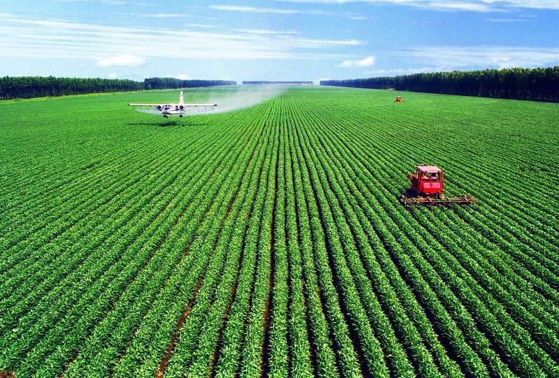 关于做大农业不做小农业,农业农村部这样答复人大代表