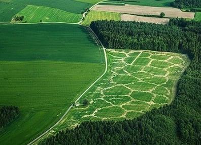 北京市关于征集数字农业农村新技术新模式新产品的通知