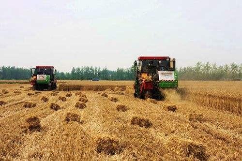 农业农村部:加快推进秸秆综合利用产业结构优化和提质增效