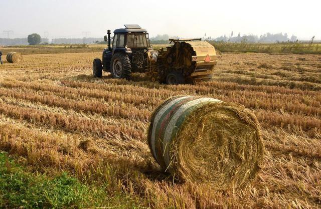 农业农村部:推动秸秆还田离田机械化作业提档升级