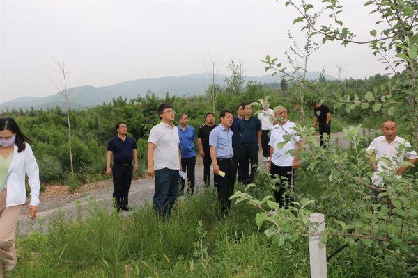 山西省农机发展中心调研芮城县林果及设施农业机械化