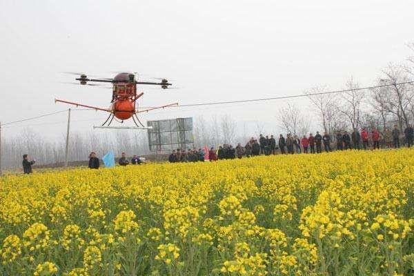 农业农村部:每年安排8亿元农作物病虫防控专项资金