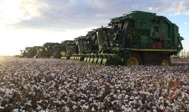 新疆自治区2019年重点强农惠农政策