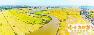 广东省已建成高标农田2431.59万亩