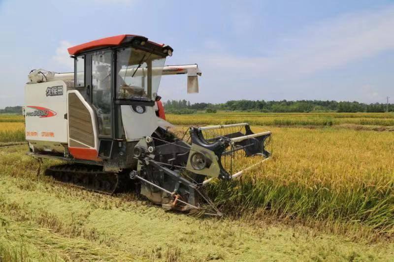 安徽省关于2019年全省农机购置补贴资金实施结算进度的通报