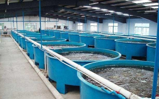 安徽省关于加快推进水产养殖业绿色发展的实施意见