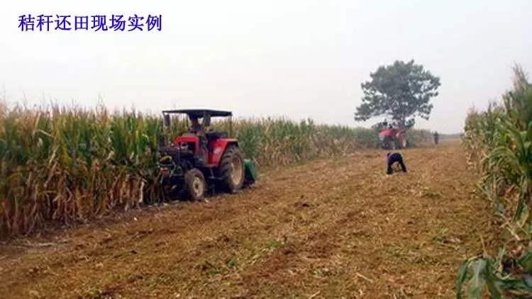 黑龙江玉米秸秆还田技术模式效果分析