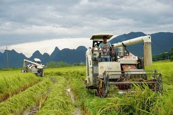 广西关于加快推进农业机械化和农机装备产业转型升级的实施意见