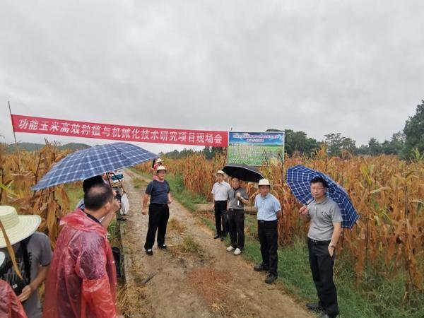 重庆市功能玉米高效种植与机械化技术研究会在梁平成功召开
