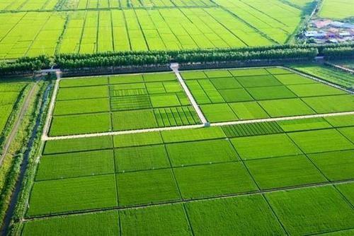 农田建设补助资金管理办法