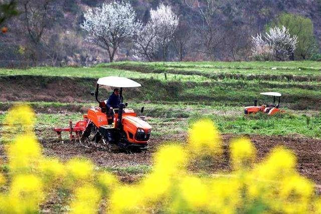 重庆市2018-2020年农机购置补贴机具2019年第1次投档产品审核情况的公示