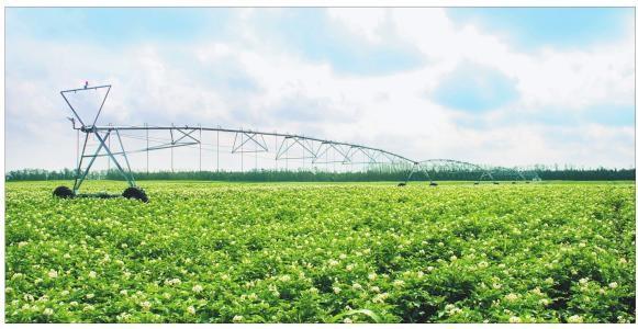 江苏省农业农村厅关于印发《江苏省高标准农田建设评价激励实施办法(试行)》的通知