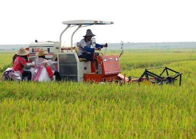 甘肃省关于2019年第三批农业机械推广鉴定结果的通报