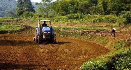 湖北省关于切实做好2019年秋冬播生产的指导意见