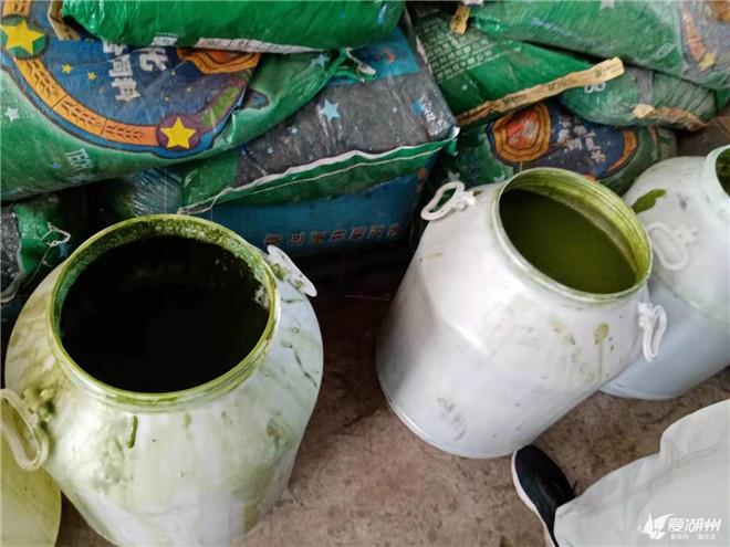 点赞!新型农机助力蓝藻治理