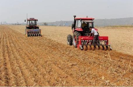 河北省2019年秋季小麦播种及冬前管理技术意见