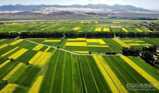 农业农村部支持社会力量参与耕地质量保护和高标准农田建设